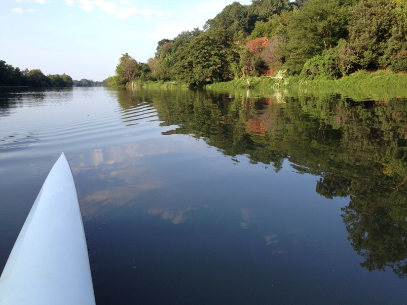 What I know about the Anacostia River